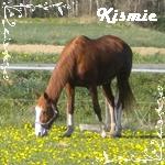 Kismie
